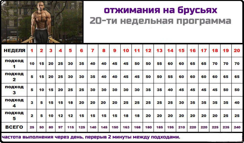 programma-na-brusjah-ya-sport.com_