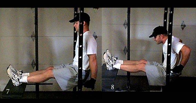 Отжимание на брусьях: техника, какие мышцы работают, варианты, схемы и программа