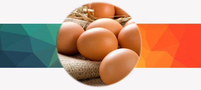 Сырые яйца для похудения: худеем на яичной диете