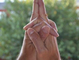 Матанги мудра (мудра внутренней гармонии и умиротворения): техника и значение в жизни человека
