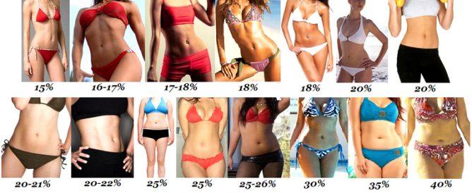 Зачем измерять процент жира