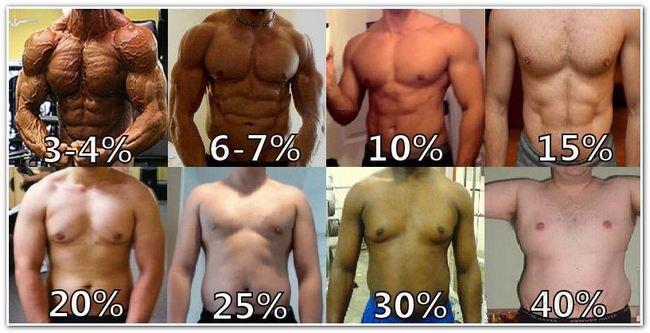 Как самостоятельно определить процент жира в организме