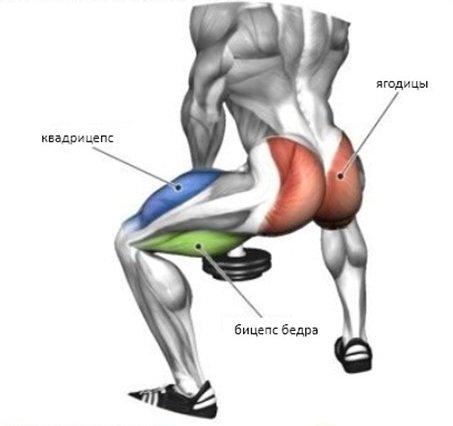 Основные работающие группы мышц