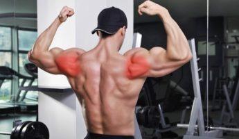 Эффективные упражнения на задние дельты